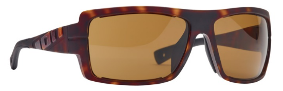 ION VISION RAY CORE SONNENBRILLE